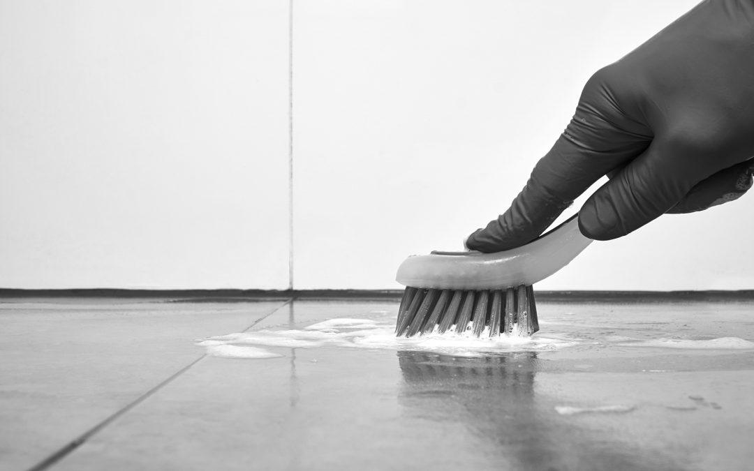 Cepillos alimentarios para la limpieza en la industria alimentaria