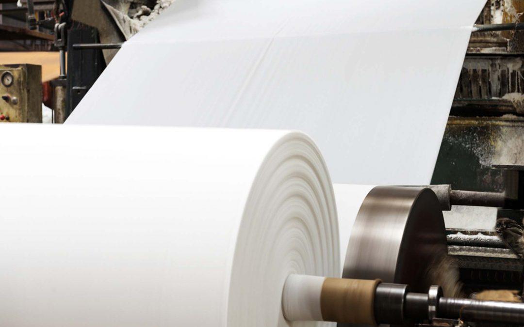 papelmatic papel camilla tipos escoger celulosa proteccion