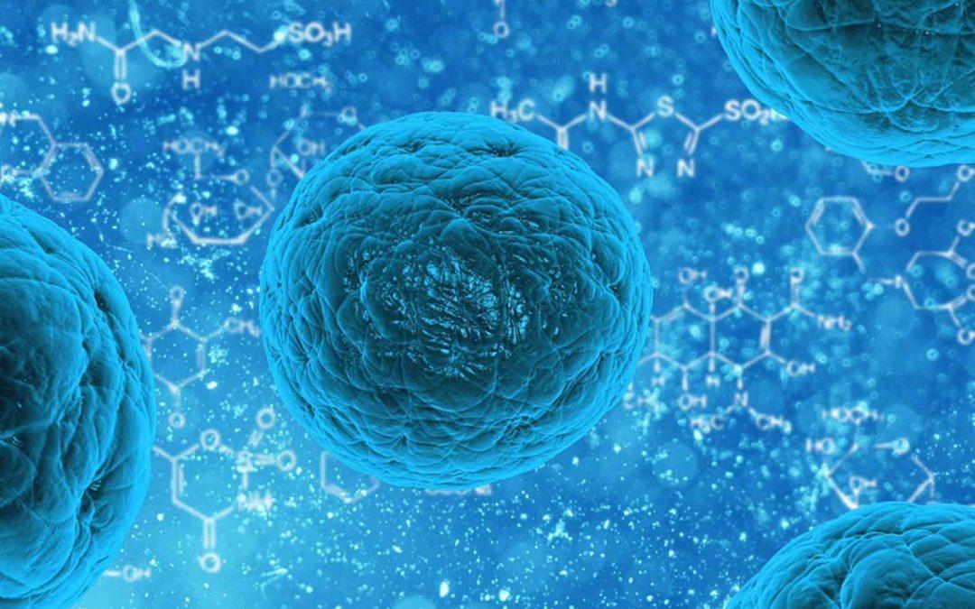 Com evitar la resistència en gèrmens?