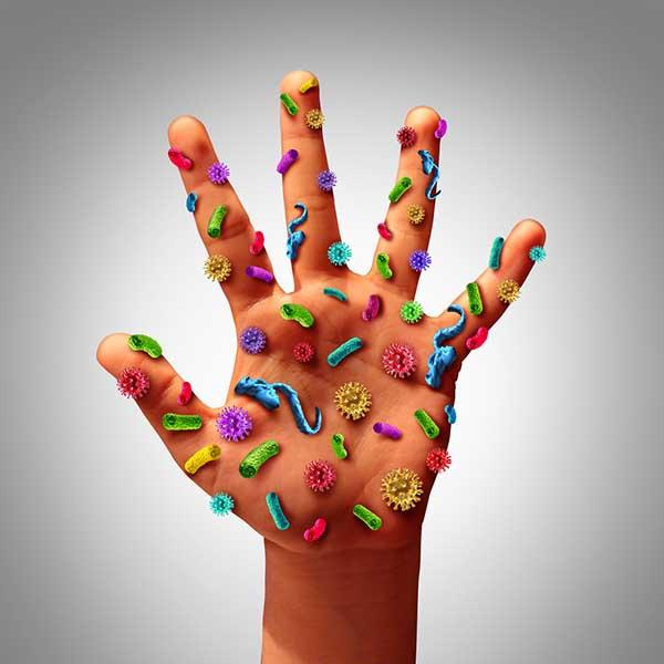 papelmatic-higiene-professional-gel-desinfectant-purell-mestres-escoles-germens-mans
