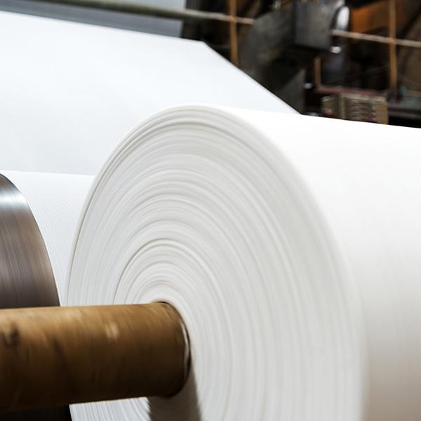 Paper reciclat o fibra verge: Què és millor?