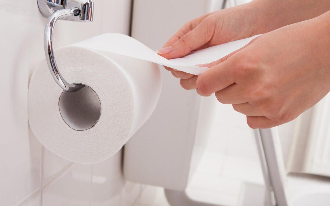 Qué papel higiénico comprar