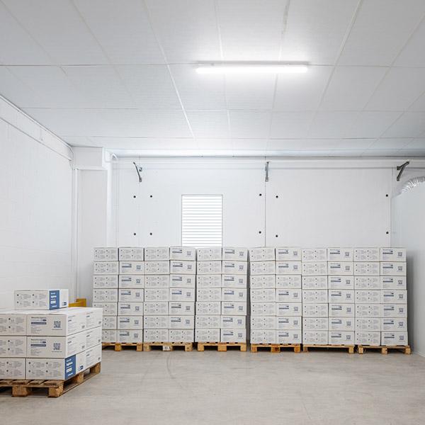 papelmatic-higiene-professional-comprar-mascaretes-origen-local-petjada-de-carboni